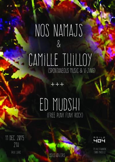 ©  - Camille Thilloy et Nos Namajs ( V Jing et musiques improvisées), et  Ed Mudshi (Free Punk Funk Rock)