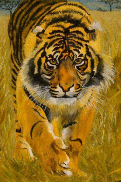 ©  - tigre , peinture à l'huile