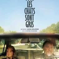 """Ciné Canapé: """"Tous les chats sont gris"""" de Savina Dellicour"""