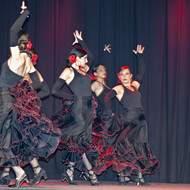 Association Viens Danser IDRON cours de Sevillane et de  Danse Orientale Tribale